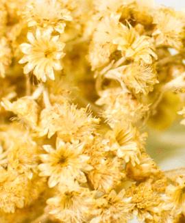 Eaux florales biologiques